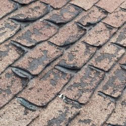 signs of failing roof